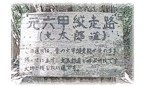 神戸市・須磨アルプスに残る旧全山縦走路(文太郎道)