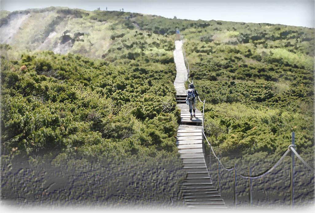 伯耆・大山山頂付近の木道 photo by 四万十川洞安