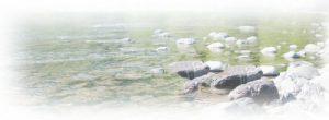 六甲山の水質調査