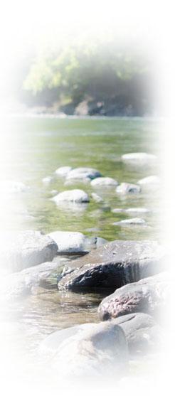 市ケ原からツエンティクロスの河原