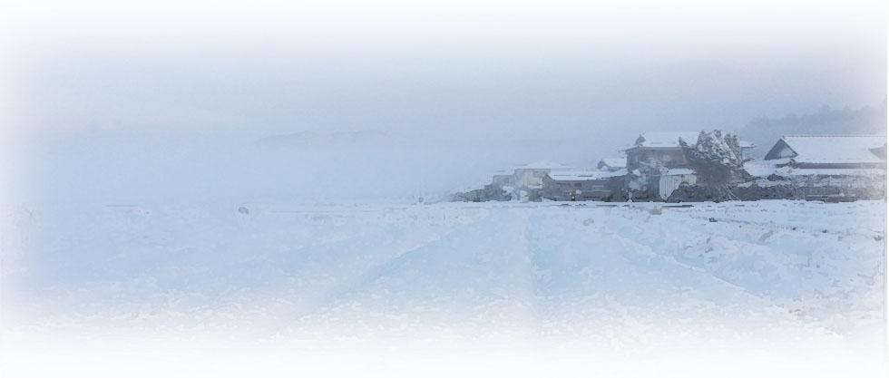 田んぼに大雪が積もった(2017年)