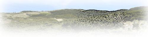 山頂近い山並み風景